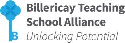 Billericay School Teaching School Alliance logo red for footer